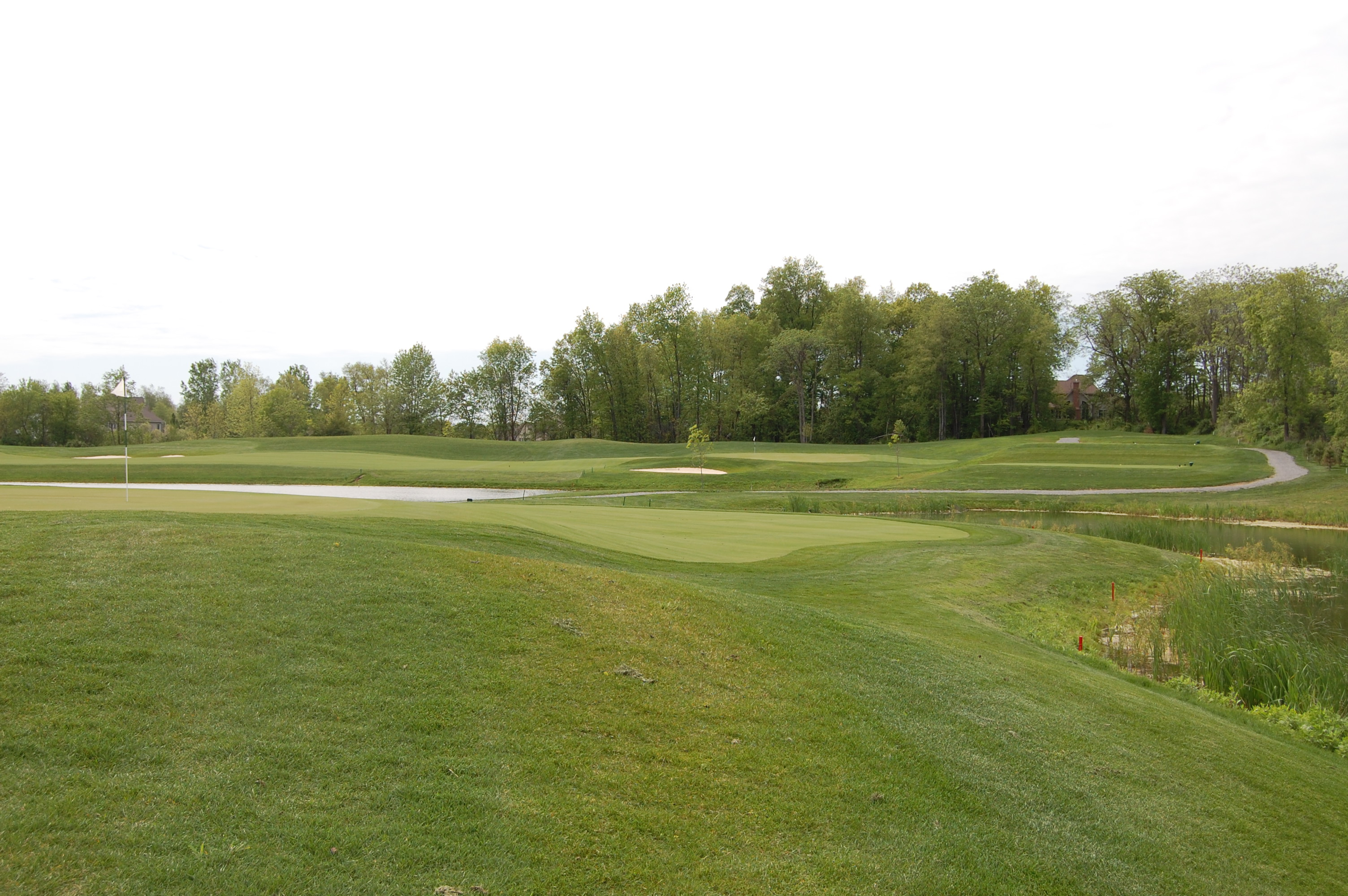 #2 Back of Green